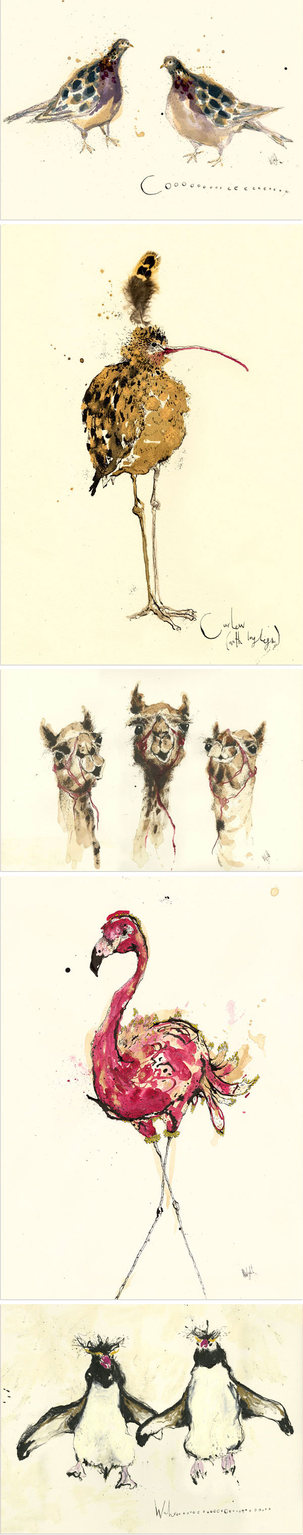 LieblingsProdukte: Anna Wright - Wunderbare Illustrationen