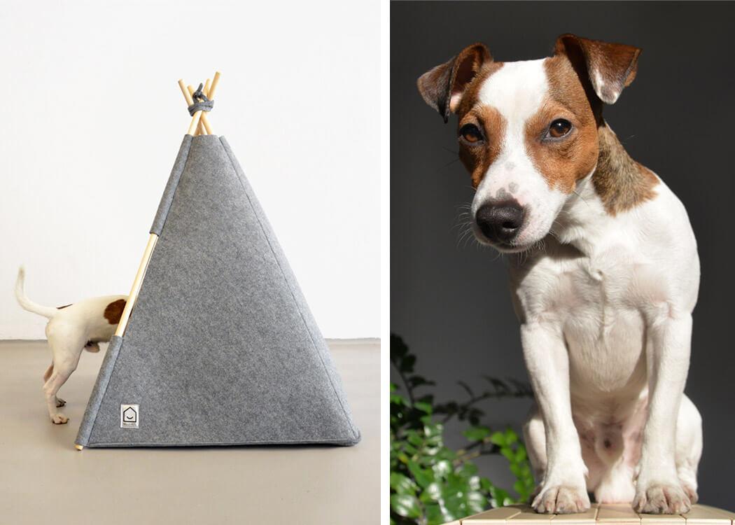 Schick wohnen mit Hund! Dazu gehört auch ein schönes Hundebett Design