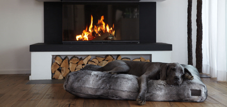 Exklusives Hundezubehör - wie deine Einrichtung noch schöner wird
