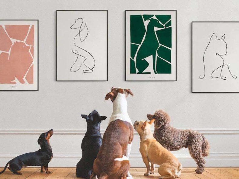Moderne Hundeportraits für Hundeliebhaber